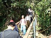 天梯、福盛山休閒農場二日遊:DSC00187.JPG