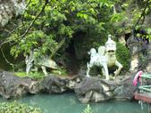 泰雅渡假村:DSCF8799.JPG
