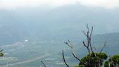 頂岩灣四格山:DSCF2324.JPG