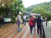 南仁湖步道:DSCF8355.JPG