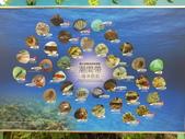 富山護魚區:DSCF4466.JPG