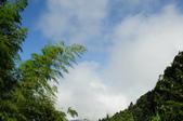 忘憂森林及小半天:DSC_1246.JPG