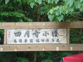 苗栗油桐花季:DSC01623.JPG
