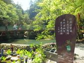 杉林溪&內湖國小:DSCF6292.JPG