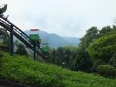 泰雅渡假村:DSCF8818.JPG