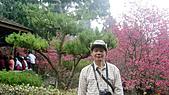 九族文化村:DSC05096.JPG