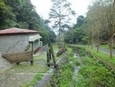 泰雅渡假村:DSCF8771.JPG