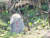 禪機山及溪邊小歇:DSCF6677.JPG