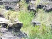 卓蘭大峽谷:DSCF1624.JPG