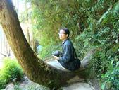 忘憂森林及小半天:DSC02439.JPG