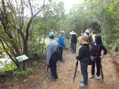 南仁湖步道:DSCF8402.JPG