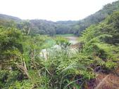 南仁湖步道:DSCF8403.JPG