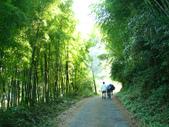 忘憂森林及小半天:DSC02408.JPG