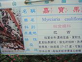 天梯、福盛山休閒農場二日遊:DSC07483.JPG