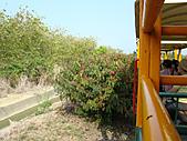 烏樹林、關子嶺及南元農場:DSC01358.JPG
