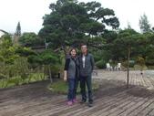 埔里綠莊飛閣度假會館:DSCF8100.JPG
