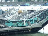 東石漁人碼頭:DSCF6331.JPG