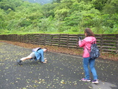 撒固兒步道(瀑布):DSCF9089.JPG