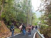 澀水森林步道:DSCF8186.JPG