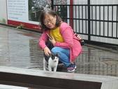 大溪木藝生態博物館及蔣公紀念堂:DSCF8647.JPG
