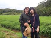 南仁湖步道:DSCF8410.JPG