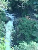 小烏來風景區:DSC03967.JPG
