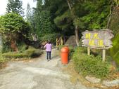 泰雅渡假村:DSCF8829.JPG