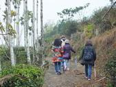 澀水森林步道:DSCF8192.JPG