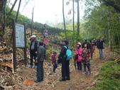 澀水森林步道:DSCF8207.JPG