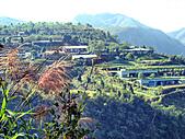 天梯、福盛山休閒農場二日遊:DSC00346.JPG