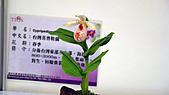 2011台灣國際蘭花展:DSC00984.JPG