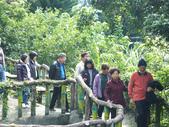 泰雅渡假村:DSCF8874.JPG