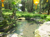 禪機山及溪邊小歇:DSCF6720.JPG