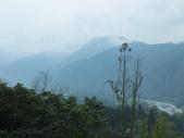 泰雅渡假村:DSCF8819.JPG