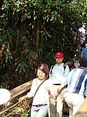 天梯、福盛山休閒農場二日遊:DSC00191.JPG