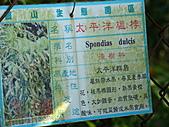 天梯、福盛山休閒農場二日遊:DSC00114.JPG