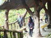 泰雅渡假村:DSCF8870.JPG