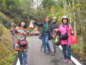 澀水森林步道:DSCF8212.JPG