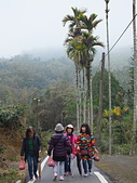 澀水森林步道:DSCF8215.JPG