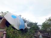 池上新興堤防:DSCF9126.JPG