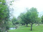 泰雅渡假村:DSCF8745.JPG
