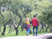 角板山公園:DSCF8744.JPG
