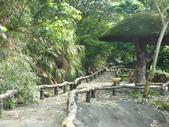 泰雅渡假村:DSCF8868.JPG