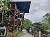 馬太鞍濕地生態園區:2020-05-27 11.50.58.jpg