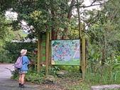 馬太鞍濕地生態園區:2020-05-27 11.37.14.jpg