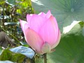 小南海自然生態公園:DSCF6193.JPG
