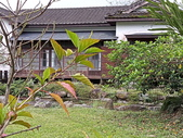 台東農場花蓮分場:2020-05-27 10.47.09.jpg