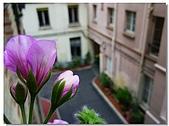 英法八日遊 - 巴黎:RIMG0177
