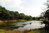 新山。夢湖:IMG_0299.jpg