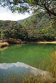 新山。夢湖:IMG_0315.jpg